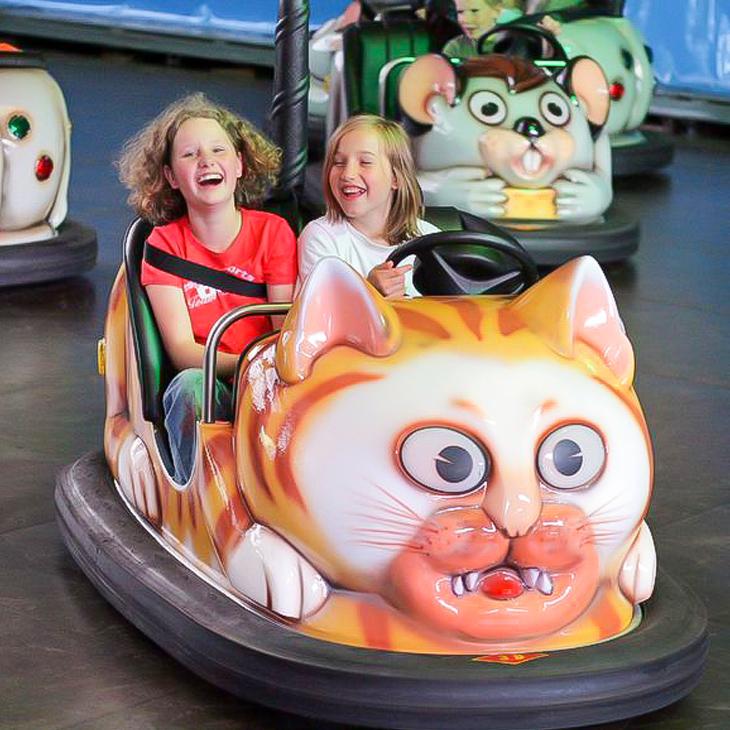 Autoskooter Katz und Maus